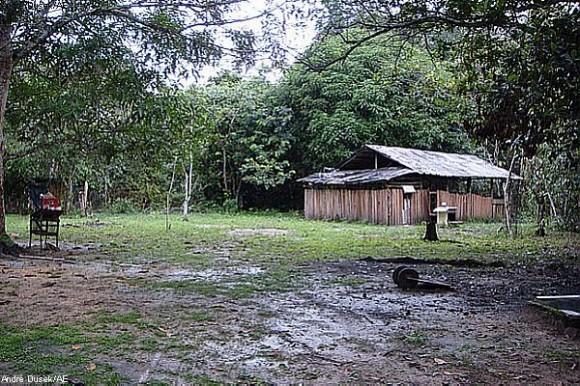FARC (ESPECIAL DOMINICAL)