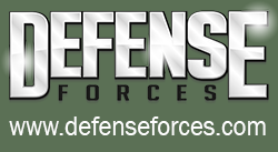 Defense Forces button ForTe