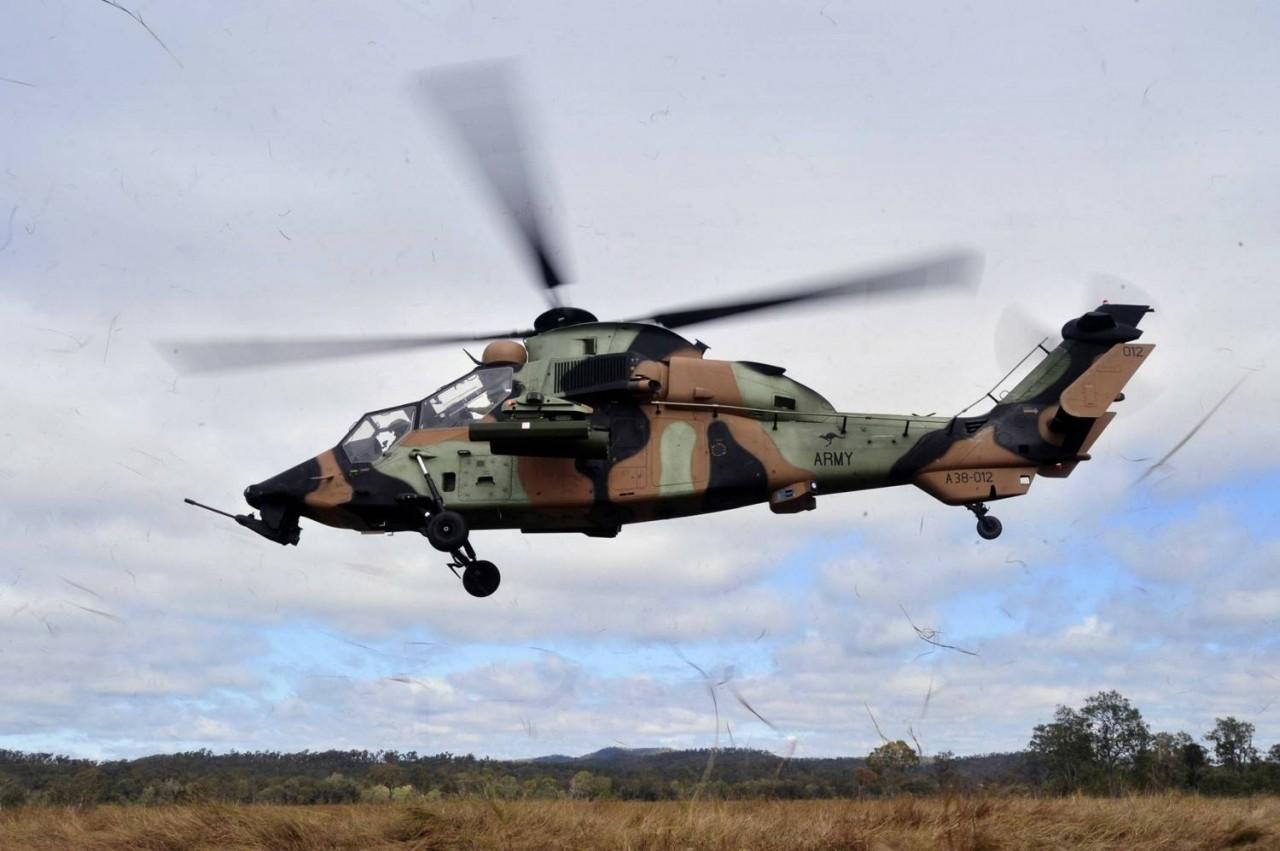 Aussie Tiger ARH-20110717