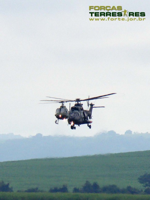 EDA 60 anos - Cougar e Fennec - foto 5 Nunão - Forças Terrestres