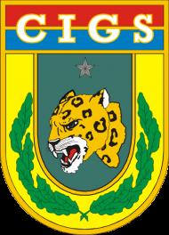 BRASÃO_DO_CIGS