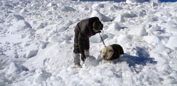 8fev2016-foto-divulgada-pelo-ministerio-da-defesa-da-india-mostra-soldado-do-exercito-e-cao-em-busca-por-sobreviventes-de-avalanche-no-glaciar-siachen